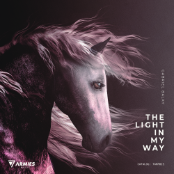 The Light_in_My_Way_ART PNG